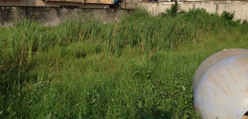 LAND FOR SALE IN AGUNGU LEKKI