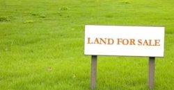 FOR SALE 1 plot of land in MOWE