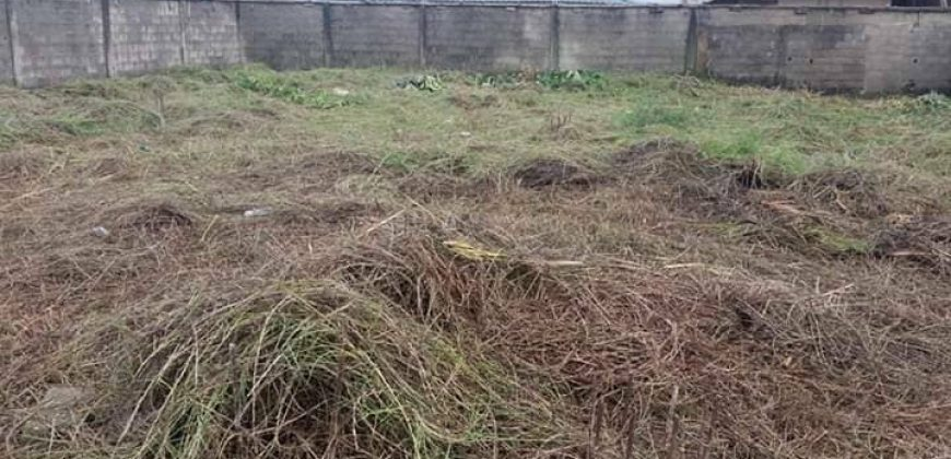 2plots of Land for sale in Isheri,close round about.