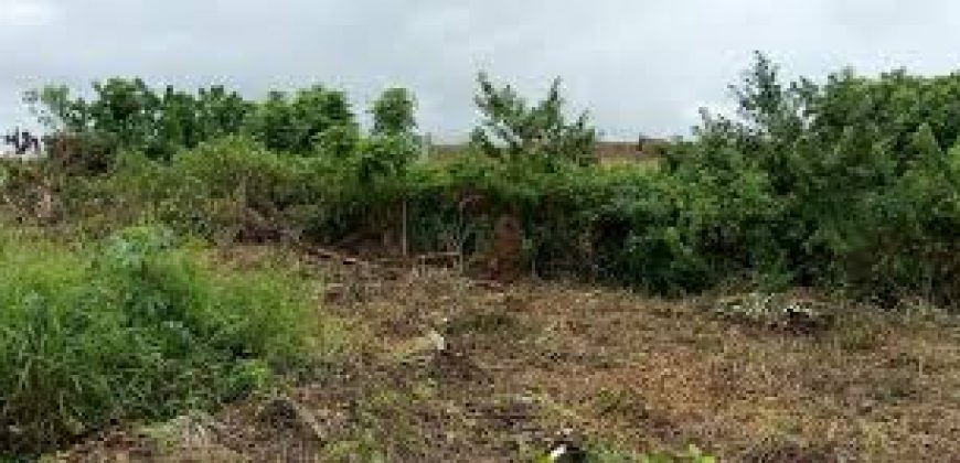 CHEAP 200 PLOTS OF Lands for Sale AT AMANSEA AWKA.