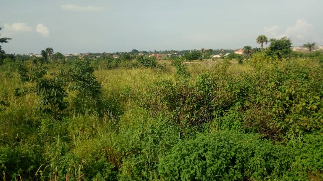 CHEAP COMMERCIAL LAND FOR SALE AT AWKA