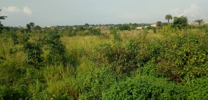 FOR SALE AT LAGOS IBADAN EXPRESSWAY:ACRES OF LAND