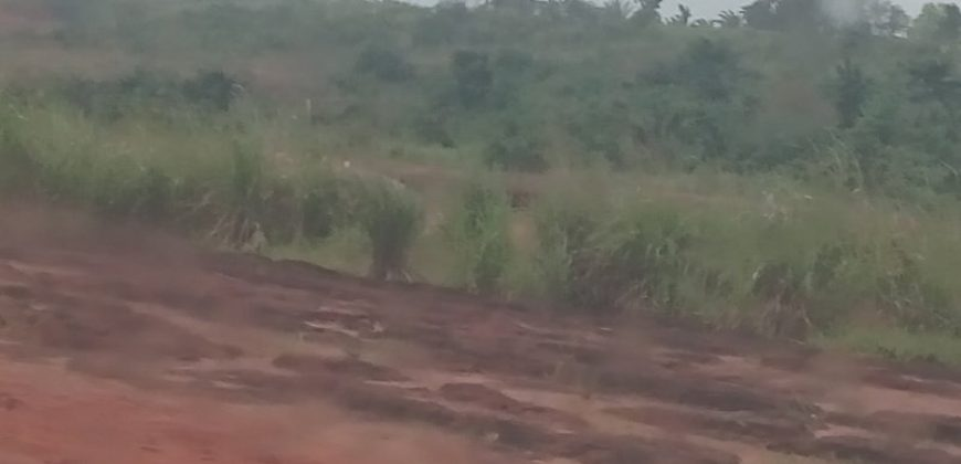 Land for sale in Awka:100 Plots Of Land With C of O For Sale In Anambra State.