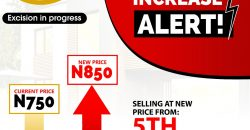 LAND FOR SALE IN IBEJU LEKKI LAGOS