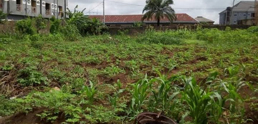 LAND FOR SALE AT OWERRI,IMO