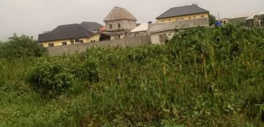 distress sale: land  for sale in owerri