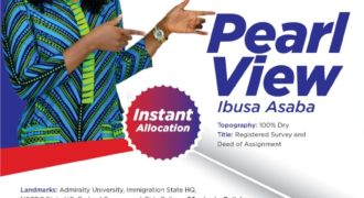 plots of land for sale in Asaba