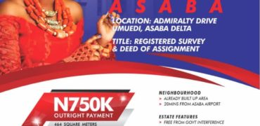 asaba lands for sale in asaba