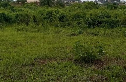 LAND IN AWKA SOUTH FOR SALE