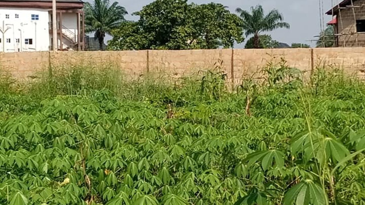 land in awka anambra state for sale