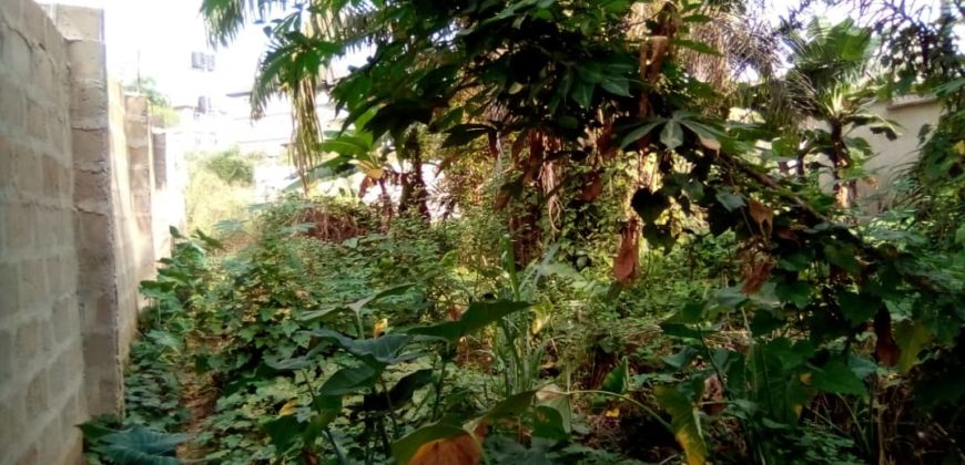 land for sale in awka,works road awka
