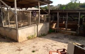 Well structured Fish Farm for sale