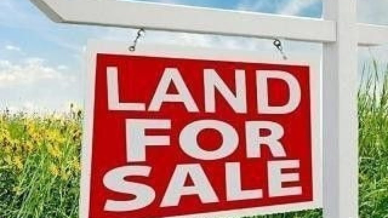 LAND & PROPERTY FOR SALE IN PALM GROOVE LAGOS