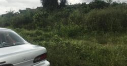 ALADIMMA IMO LAND FOR SALE