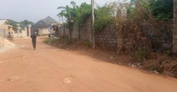 UMUGUMA LANDS FOR SALE