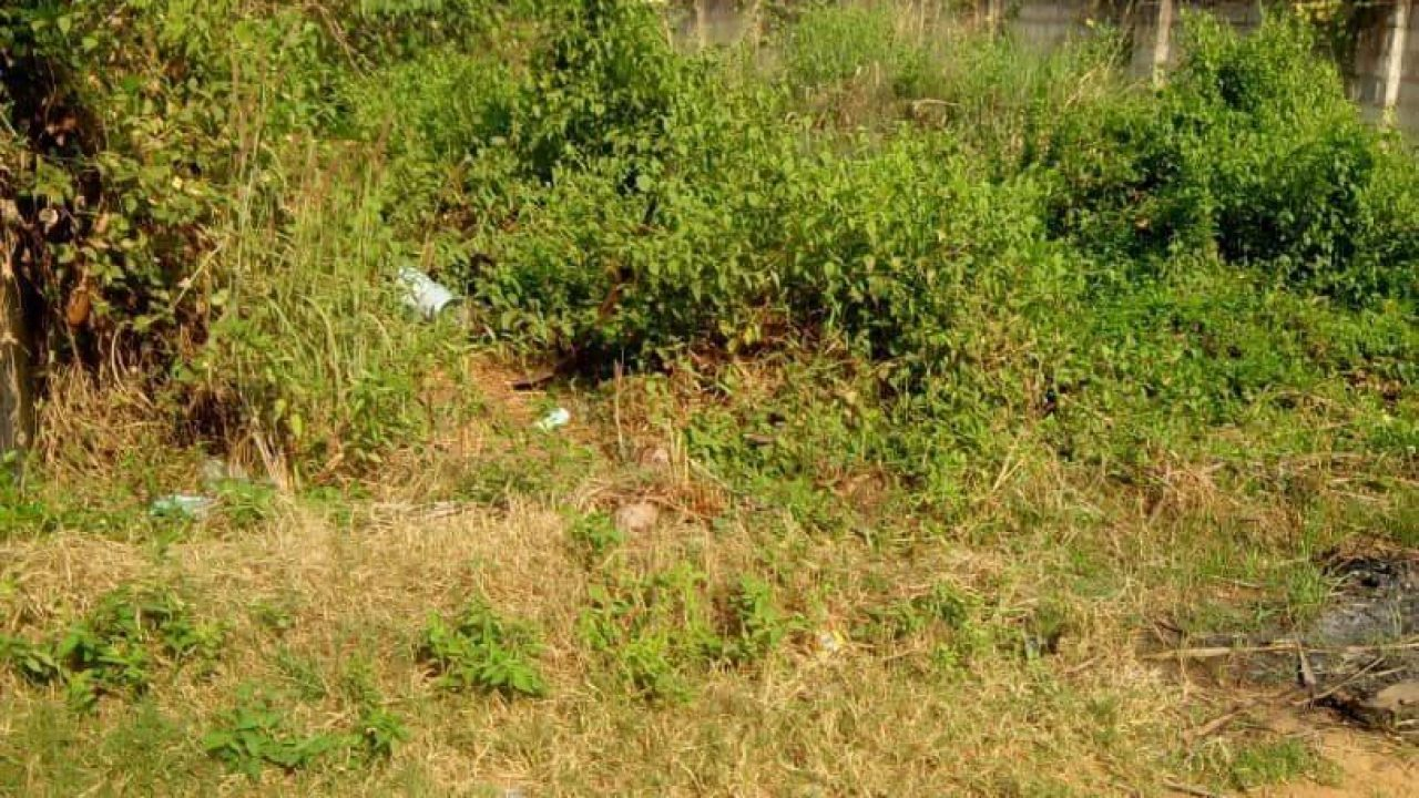 land in Nsugbe for sale
